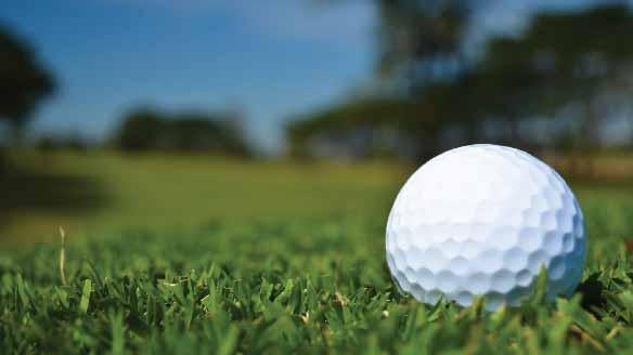 Golf ball resting on golf turf